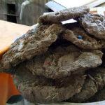 Breaking science news: yak dung burning pollutes indoor air of tibetan households