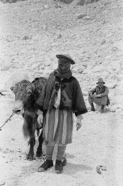 How yaks and humans have resided in partnership for hundreds of years picture from the journey