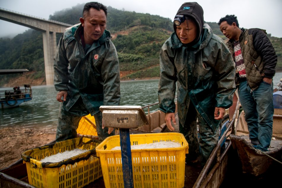 Screening: a farmer' title='Screening: a farmer' /></p> <p>Area of the film series<br></p> <p>Waking the Eco-friendly Tiger: Documentaries in the Front Lines of China's Ecological Crisis<br></p> <p>(August 18-27, 2014)</p> <p>Double-bill — registration admits to both films below:</p> <p><strong>A Farmer's Struggle</strong><br></p> <p>Dir. Zhao Liang. China. 2009. 30 min. Chinese with British subtitles.</p> <p>Desertification continues to be threatening livelihoods in lots of areas of China. In Minqin, Gansu province, a maturing player and the wife would be the only occupants left within this small village that's more and more ingested through the evolving desert. Becoming an adult fishing inside a local lake which has since dried out, the player presently has they are driving to a different village for water. As the government encourages families to maneuver to Xinjiang using the offer of the subsidy, that old couple stays put — for now at least — to protect their house.</p> <p><strong>Yak Dung</strong><br></p> <p><img style='margin: 5px; clear:both;