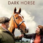 Synopsis – all of the wild horses — the film