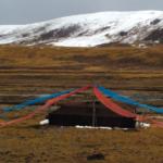 Tibetan culture: yak hair tent