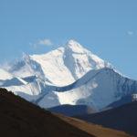 Tibetan wild yak adventures