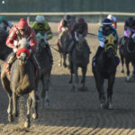Tightend touchdown upsets as longshots rule parx dash – ptha