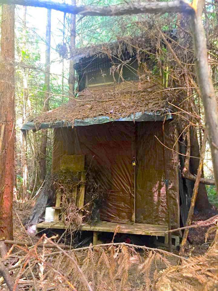 Yak tracks result in new cabin revelations, hidden bunker area last summer time