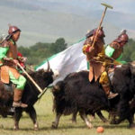Yak – uncyclopedia, the information-free encyclopedia